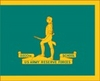 U.S. Army Reserve School Organizational Flag