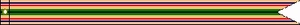 U.S. Coast Guard Southwest Asia Service Streamer