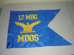 "USAF Guidon (Medium) 15"" x 20"""