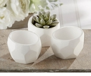 Mini Planter (Set of 4)