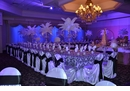 Ostrich Feather Decoration Rental
