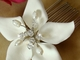 Starfish Orchid Style Bridal Comb