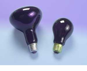 60A/BLACKLIGHT 120V - Black Light Bulb