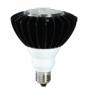 EIKO LEDP/PAR38-FL-30K - PAR38 LED Light Bulb