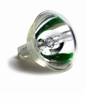ESJ Eiko Light Bulb