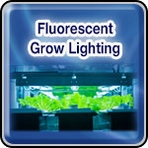 Fluorescent Grow Lighting