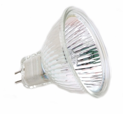 FNV/CC Light Bulb