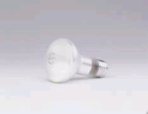 Incandescent 45R20 120V Reflector Light Bulb