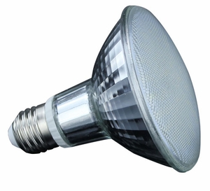 Par30 SN 8w LED Lamp - Light Bulb