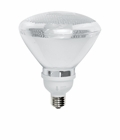 TCP 2P3819PERM Floodlight Compact Fluorescent Light Bulb