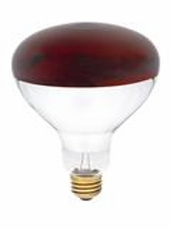 Westinghouse 250R40/HT/R/EZ R40 Infrared Heat Incandescent Light Bulb