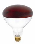 Westinghouse 250R40/HT/R R40 Infrared Heat Incandescent Light Bulb