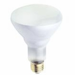 Westinghouse 50BR30/FL BR30 Incandescent Light Bulb