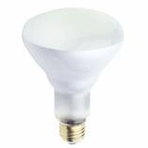 Westinghouse 65BR30/FL/130 BR30 Incandescent Light Bulb