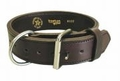 "Boston Leather 2"" K-9 Premium Leather Agitation Collar"