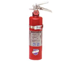 Buckeye 13315 ABC Multipurpose Dry Chemical Hand Held Fire Extinguisher