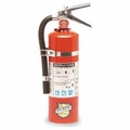 Buckeye 25614 ABC Multipurpose Dry Chemical Hand Held Fire Extinguisher