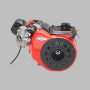 Briggs and Stratton Animal Engine