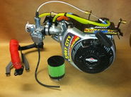 WKA / IKF Blueprinted World Formula Engine Without Electric Start and Without Titan Clutch