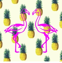 Flamingos and Pineapples - OH MY !!!