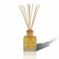 Personalized Reed Diffuser Complete with oil