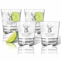 Tritan Double Old Fashioned Glasses 12oz (Set of 4) : Buck Lodge