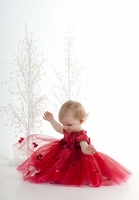 Biscotti Rose Rhapsody Red Ballerina Dress