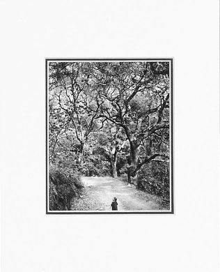 CHILD ON FOREST ROAD - SMALL MATTED REPRODUCTION