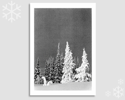 PHILIP V AUGUSTIN - GHOST TREES, TWO TOP MOUNTAIN, MT - NOTECARD
