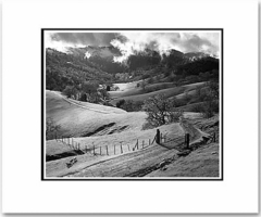 """ANSEL ADAMS - PASTURE, SONOMA COUNTY, NORTHERN CALIFORNIA  Large Ansel Adams Matted Reproduction (16"""" x 20"""")"""