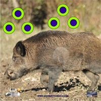 American Whitetail Tough Target Face Wild Boar 32x32
