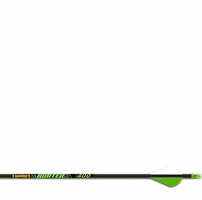"Gold Tip Hunter XT Arrows w/2"" Raptor Vanes 6 Pack"