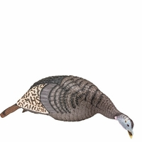 Hunter Specialties Strut-Lite Feeding Hen Decoy