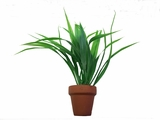"10"" Long Green Plant in 2"" Clay Pot, 1pc"