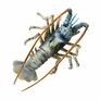 "4"" Spiny Lobster D�cor - Aqua, 1pc"