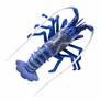 "4"" Spiny Lobster D�cor - Blue, 1pc"