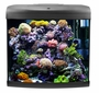 Aquarium Fish Tank ST500 Aquatop 14.5 Gallons - Gray
