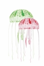 Floating Jellyfish Decor 2pk - Green/Red