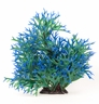 "Multi-colored Green/ Blue, Approx. 15""  Staghorn Plant Decor"