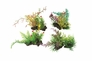 "Plastic Aquarium Plants - Assorted Green 3"" High (4-Pack)"