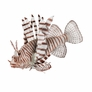 Silicone Lionfish Decor - Brown, 1pc