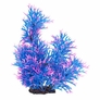 Staghorn Style Blue & Pink Plant 18""