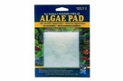 API Doc Wellfish's Hand Held Algae Pad Acrylic Aquariums