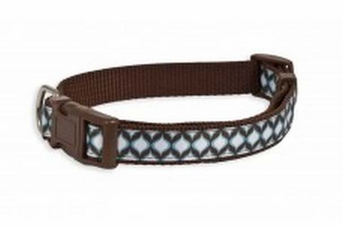 Aspen Pet Ribbon Overlay Adjustable Collar Delicious Jeannie 1in x 16-26in