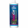 Caribsea ReefCal Ionic Calcium Solution 16oz