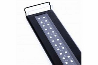 Current USA Satellite Freshwater LED Plus 36in-48in