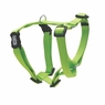 "Dogit Adjustable Harness, 3/4"" x neck: 16-23"" x Chest: 20-28"", Medium, Green, From Hagen"