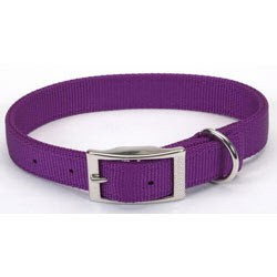 """Dogit Nylon Collar with Buckle - Double Ply 1""""x 24"""" purple, From Hagen"""