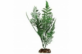 Aqueon Fern Plant 9in