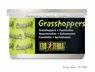 Exo Terra Male Grasshoppers, 1.2 oz, From Exo Terra